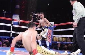 romero-duno-boxer